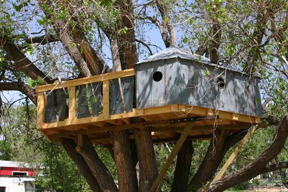 Sand Creek Ranch Treehouse